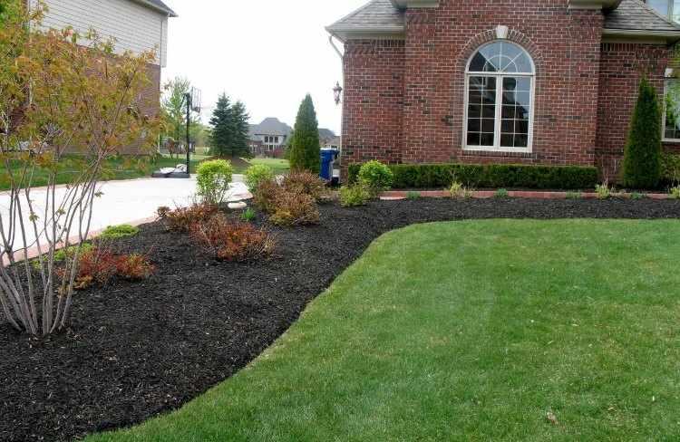 Como proteger el terreno de nuestro jardin o Mulch