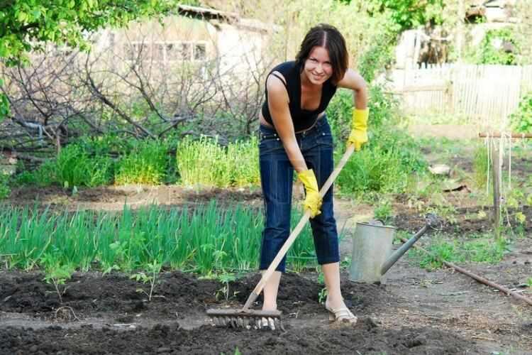 Como mantener un jardin en buen estado