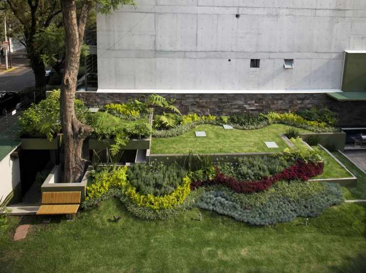 Plantas para jardines peque os variedades y decoracion for Jardin que planter en novembre