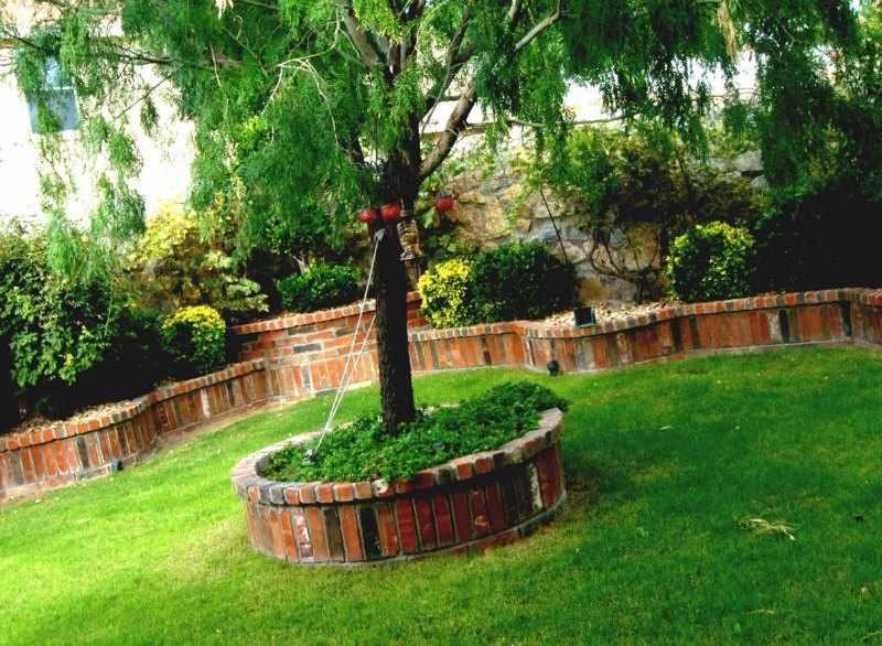 Como elegir un arbol para el jardin sobra crecimiento for Arbol de fuego jardin