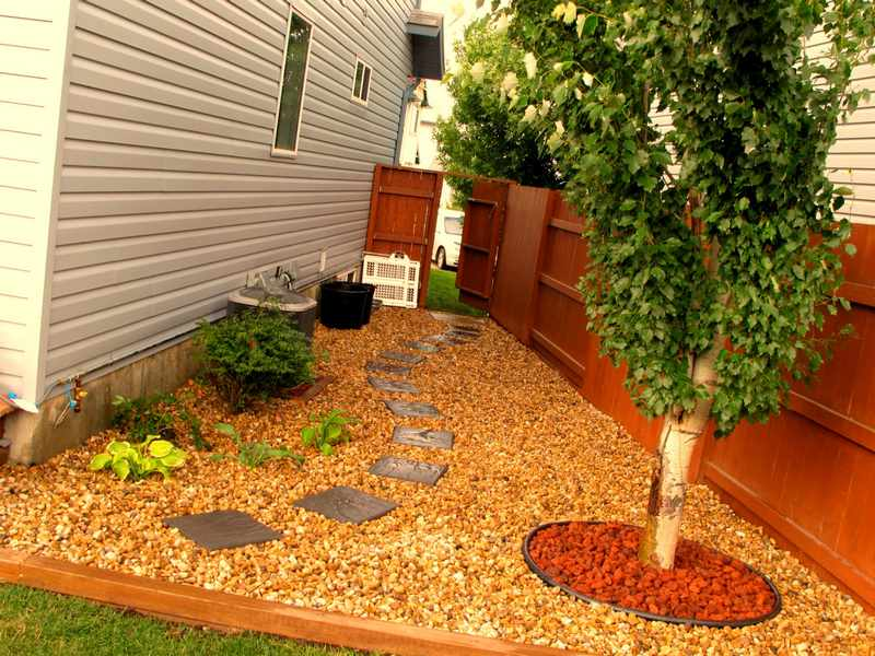 Arbol para jardin dise os arquitect nicos for Arboles de jardin de hoja perenne