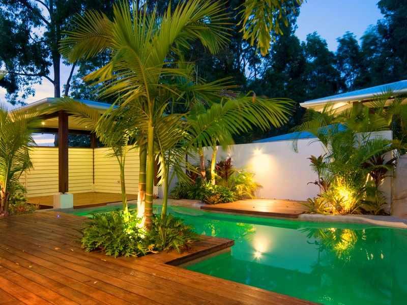 palmeras de exterior variedades
