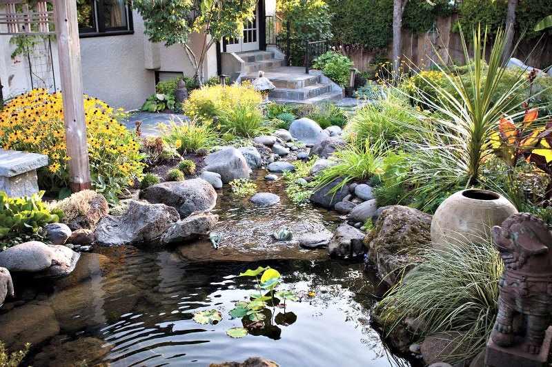 Jardin con plantas acuaticas zen tipos y como hacerlo - Plantas para jardin zen ...
