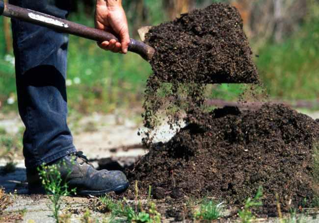 Como mejorar el suelo del jardin