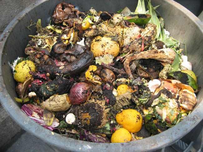 Que necesitamos para preparar abono organico