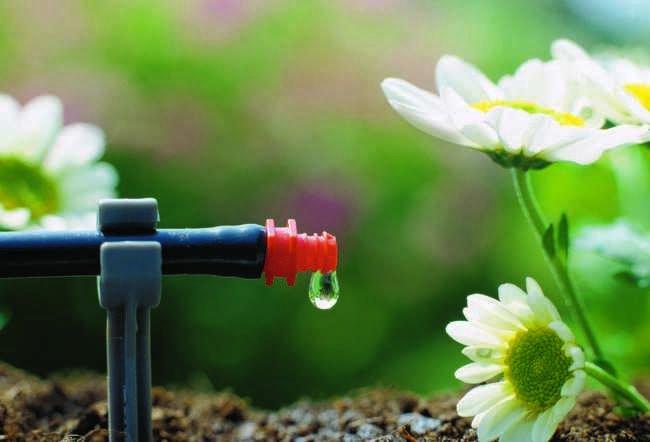 Sistema de riego automatico casero para plantas