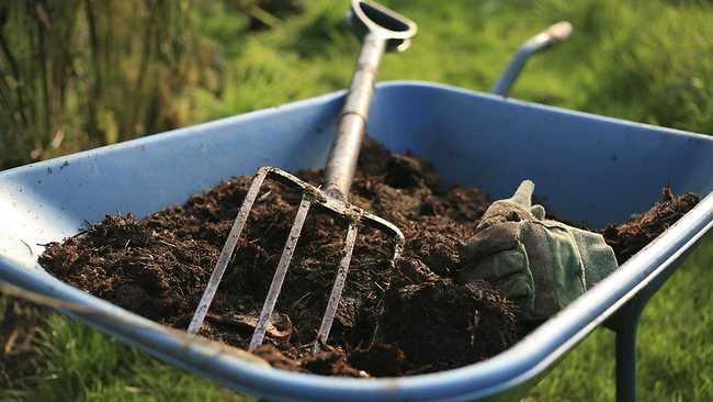 como mejorar el suelo de mi jardin
