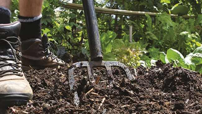 como mejorar el suelo de un jardin