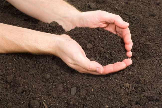 mejorar suelo de jardin