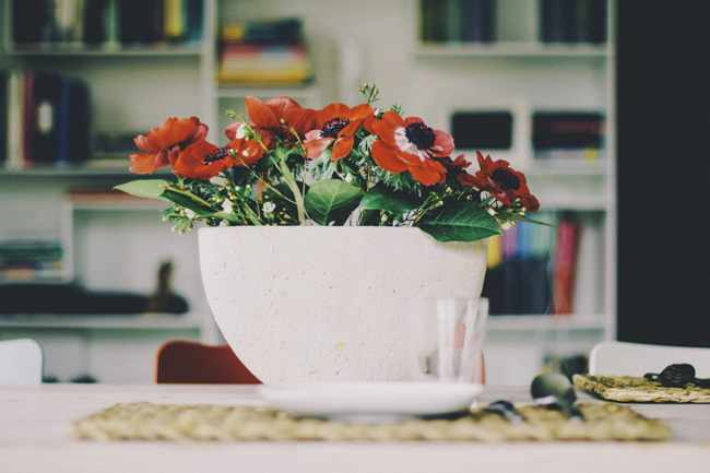 plantas purificadoras de aire interiores