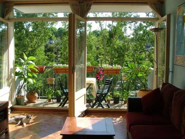 plantas balcones