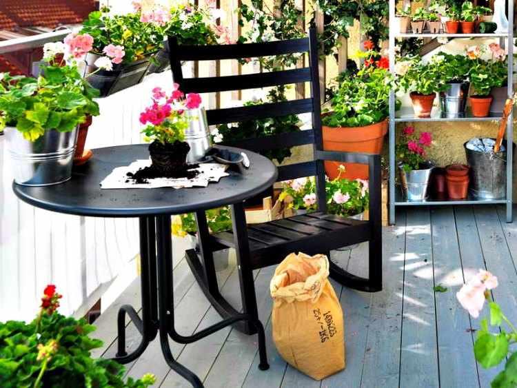 plantas para balcones con flores