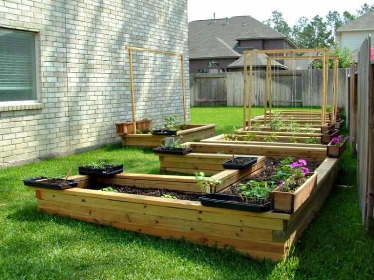 consejos para tener un buen jardin