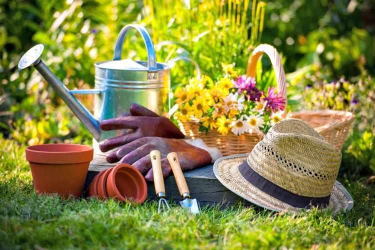 nuevas tendencias de jardineria