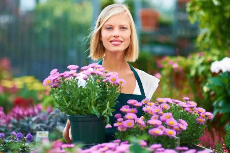 Consejos para el cuidado de las plantas