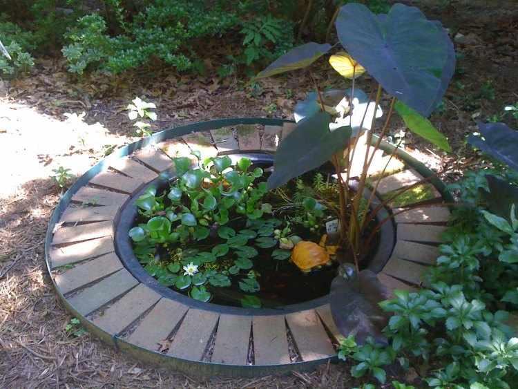 Fuentes de agua para jardines peque os for Peces para fuente exterior