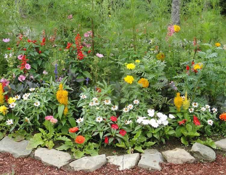 fotos de jardines rusticos
