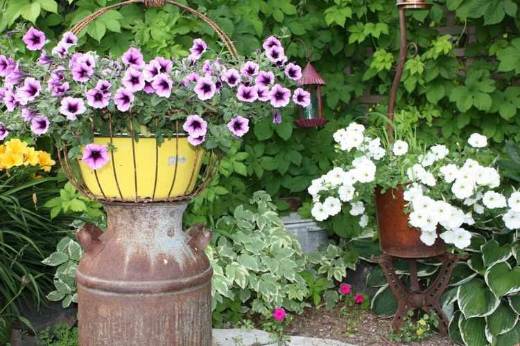imagenes de jardines rusticos