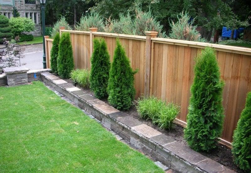arbustos para jardines exteriores