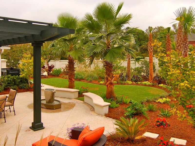 riego de palmeras de exterior