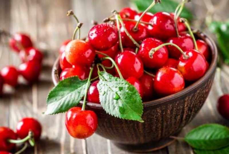 propiedades medicinales del cerezo